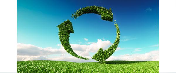 Plan España Digital 2025: descarbonización y reducción de la brecha social y digital