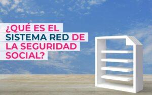 ¿Qué es el sistema RED de la Seguridad Social?